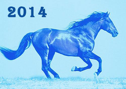 2014 – Год синей Лошади