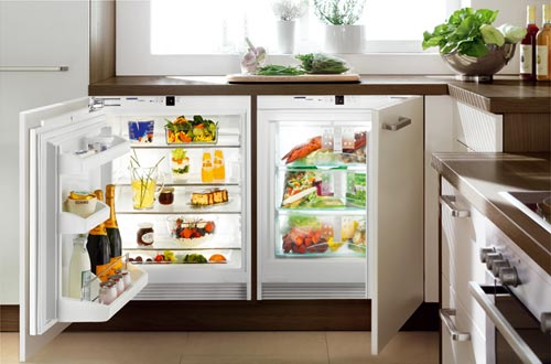Нужны ли в хозяйстве морозильные камеры?
