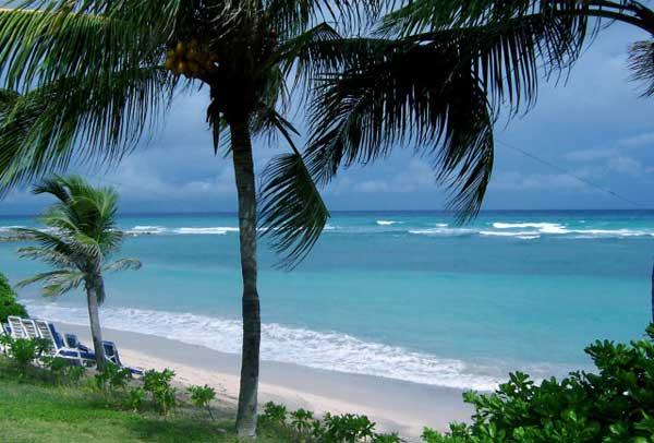 Тропические острова в Новый год