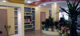 Цветочные композиции и горшечные растения для оформления офиса