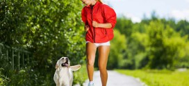 Собака вместо спортзала