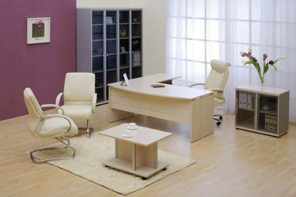 Как бизнес леди оформить свой рабочий кабинет