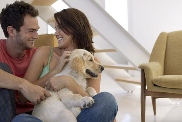 Почему женщина должна стремится создавать уют в доме?