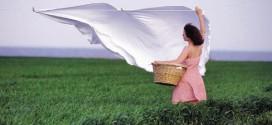 Безопасная альтернатива стиральным порошкам