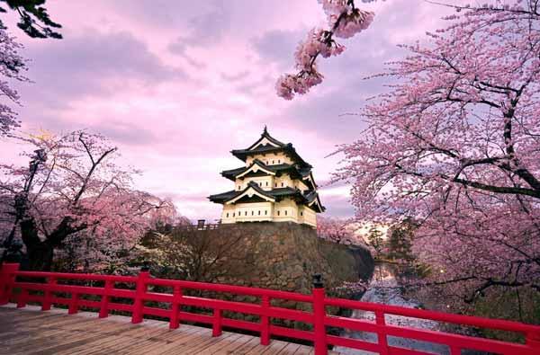 Что интересного можно увидеть в Японии