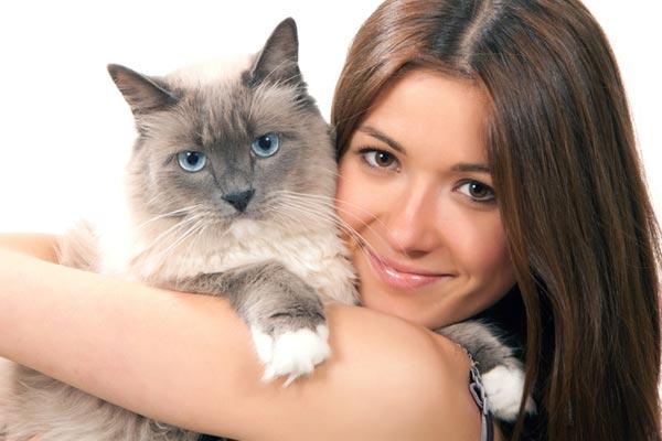 25 доказательств, что ваш кот вас любит