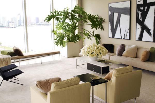 Украшаем интерьер квартиры при помощи комнатных растений