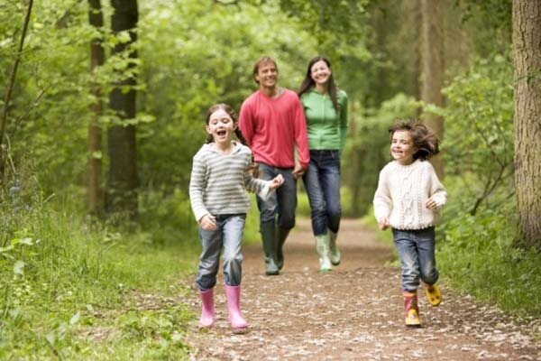Чем полезен отдых в лесу?