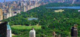 7 причин посетить Нью-Йорк летом