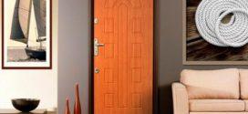 Выбор входных дверей