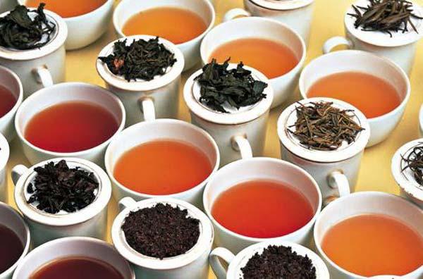 Многообразие чайного мира
