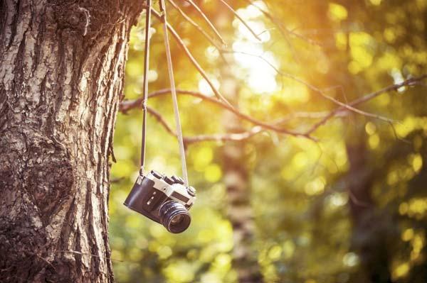 Фотография, как современное увлечение