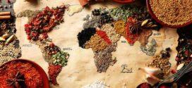 Путешествие в мир специй в поисках новых вкусов (фото)