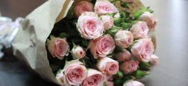 Роза – королева цветов