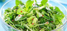 Как получить витамины весной: полезные сезонные растения