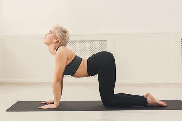 Топ 5 простых упражнений йога-асан для здоровой спины