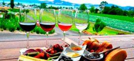 Как правильно сочетать вино и продукты