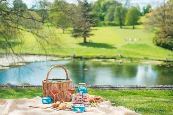 Как организовать пикник: 9 советов