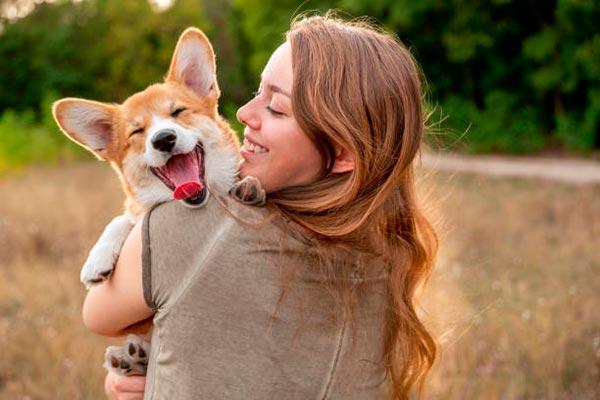 5 способов сделать жизнь вашей собаки дольше и счастливее