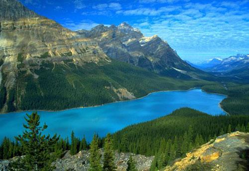 Самые удивительные озера мира. Пейто в Канаде