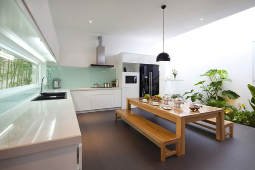Кухня и комнатные цветы