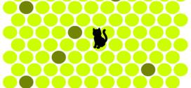 Лучшая флеш игра с котенком