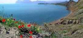 Западное побережье Крыма ждет вас