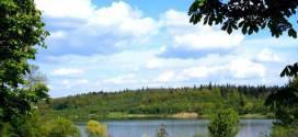 Отдых в Трускавце: что можно посмотреть туристу