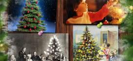 История появления рождественской елки
