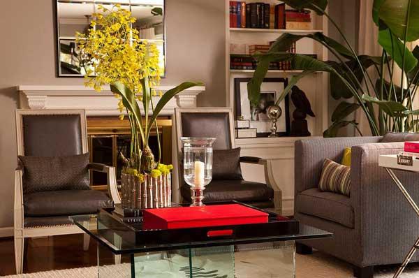 Как подобрать растения для разных помещений дома или квартиры?