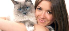 25 доказательств, что ваш кот вас любит (фото)