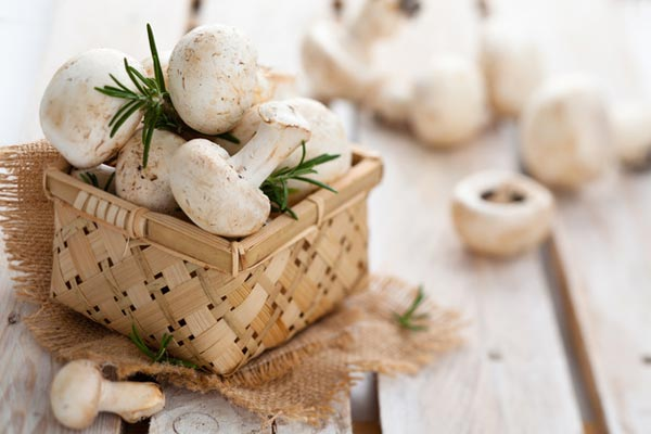 С какими продуктами сочетаются грибы?