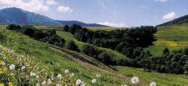 Шаян: место для отдыха и перспективы капиталовложения