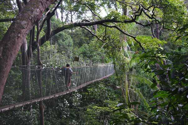 6 мест Малайзии, которые стоит посетить