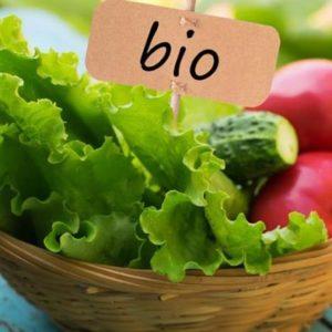 Отличия биопродуктов от магазинных продуктов