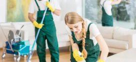 Как профессионалы оказывают клининговые услуги?