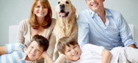 Из чего состоит семейная гармония?