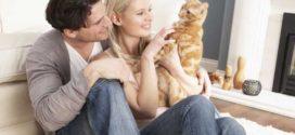 Учимся жить вдвоем: как сохранить свой брак