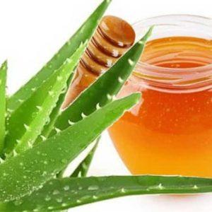 Рецепты алоэ с мёдом для желудка и кишечника