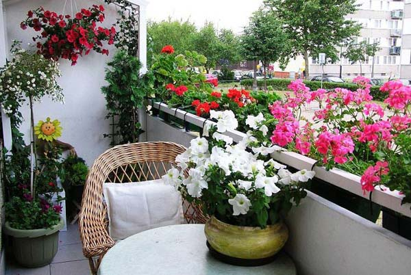 Балкон-цветник